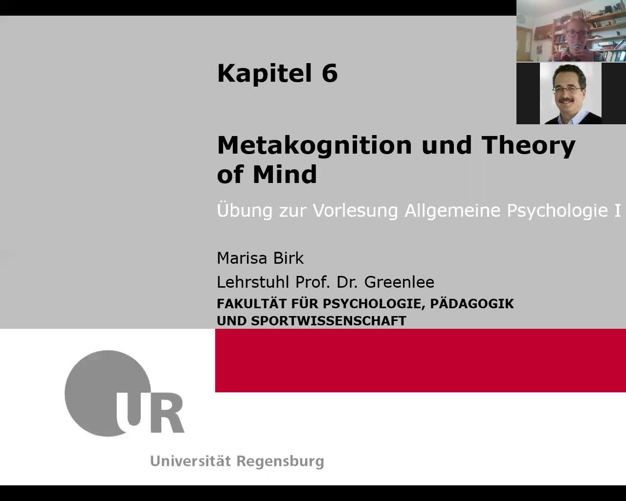 6. Metakognition und Theory of Mind