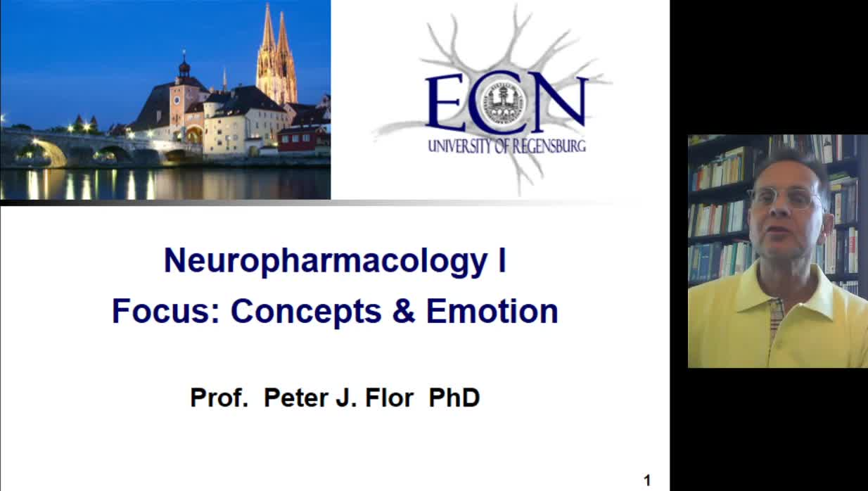 Examples Pathways and Processing 1: Neuropharmacology