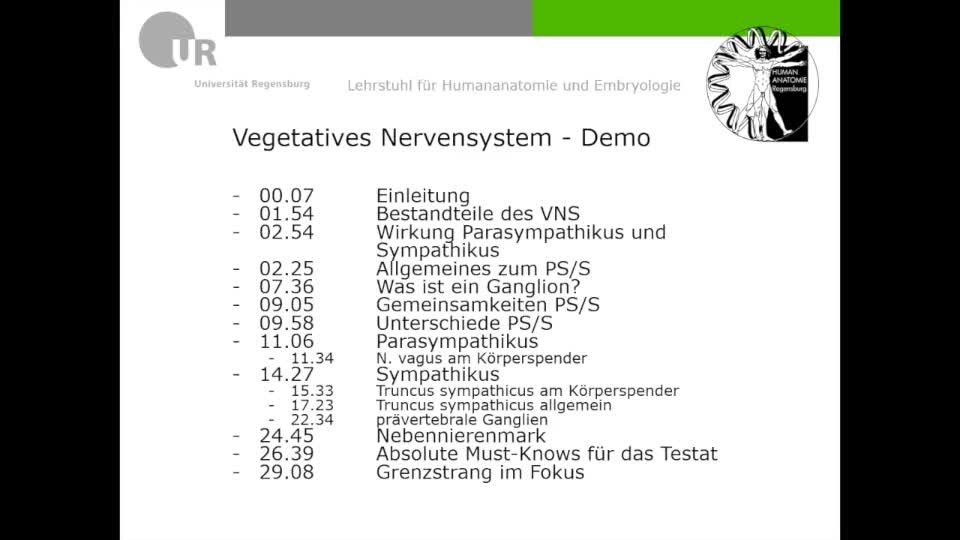 Demo Vegetatives Nervensystem