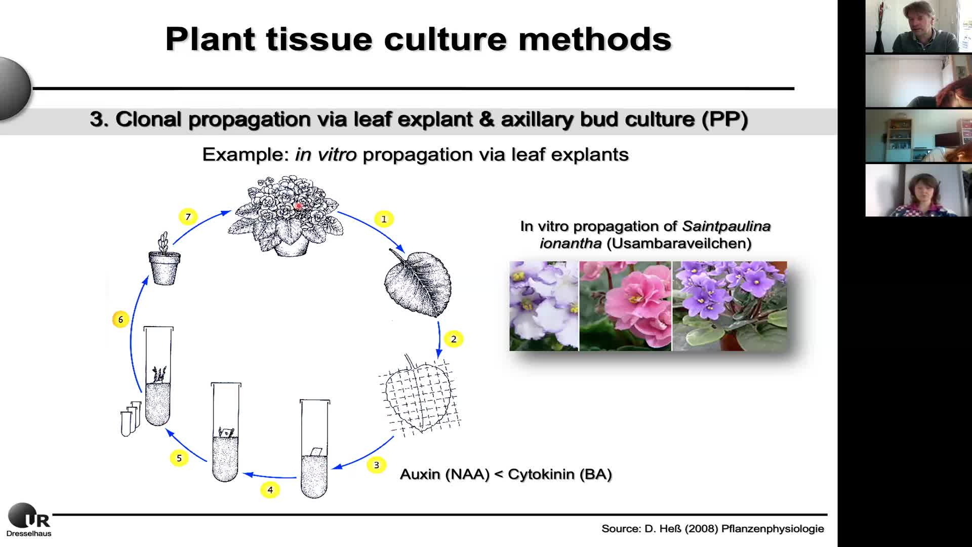 Plant Biotechnology Lecture 3